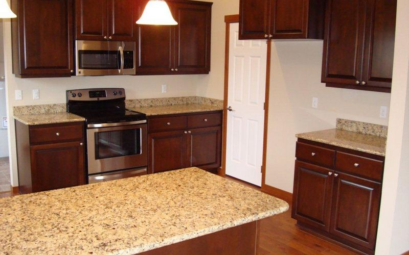 1920,Granite-Countertops,Stainless-Steel-Appliances,Kitchen